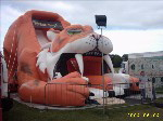 One of a range of inflatables availalbe for hire