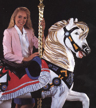 Carousel Hire image